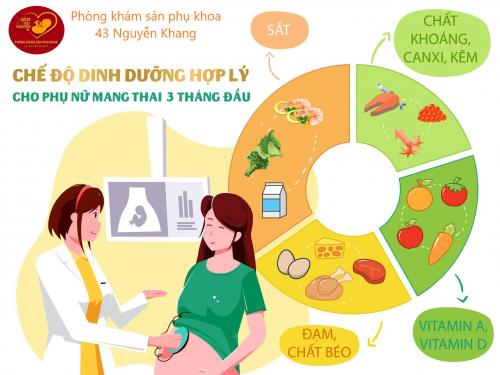 Chế độ dinh dưỡng trong 3 tháng đầu thai kỳ